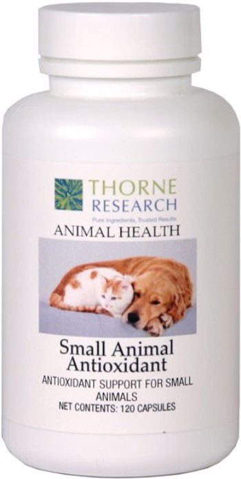 small animal research Veterinary medicine research learn about experimental techniques, animal cloning, vaccinations, and more.