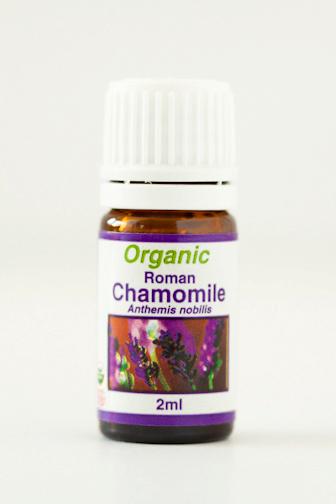 chamomile_roman.png