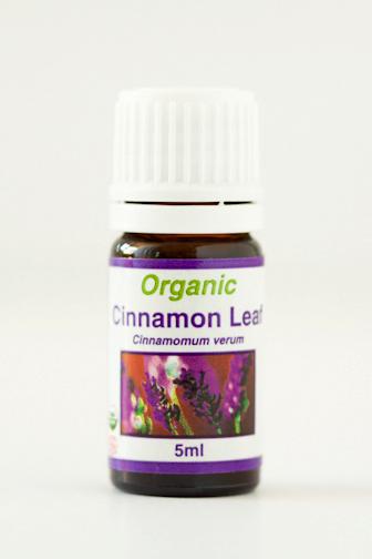 cinnamon_leaf.png